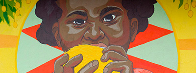 Mango Jam: soberanía alimentaria para indígenas y campesinas de la Sierra Nevada de Santa Marta