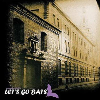 bat-2.jpg