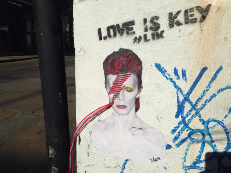 bowie_0.png