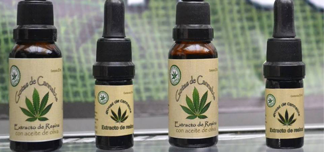 ninos-cannabis-4.jpg