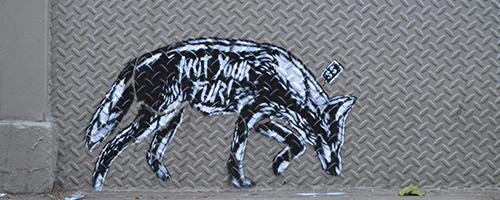 praxis grafiti colombia