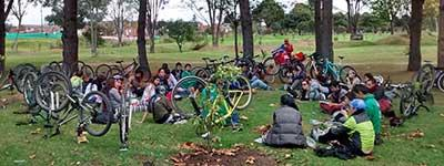 Diplomado Ambiental Cartel Urbano