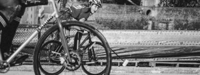 Bike Polo apaisada