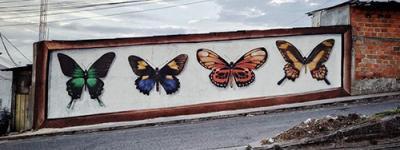 arte urbano eje cafetero