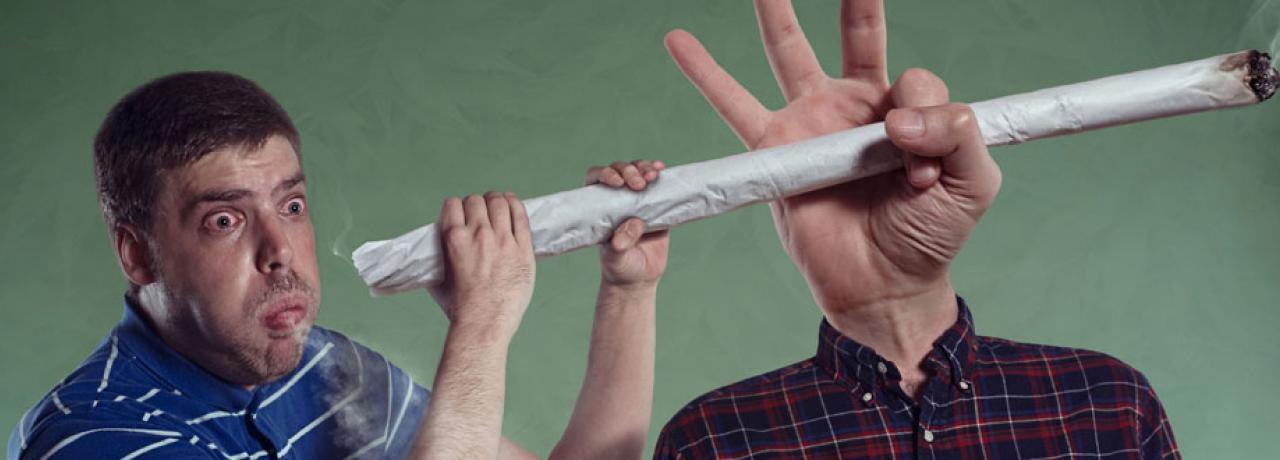 Todas la información sobre la marihuana