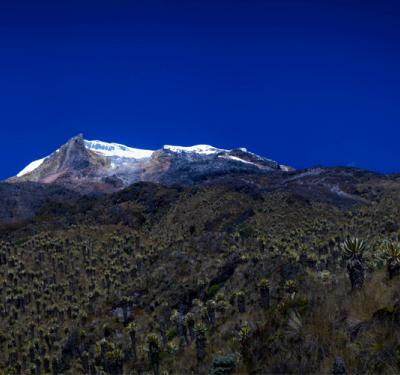 Parque de los Nevados, acampar