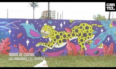 Colores para la Ciudad Blanca: Arte Urbano en Popayán