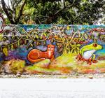 La Alegría Resiste y Yuma Despierta son dos iniciativas que usan el arte urbano y la música para hacerles frente a la pérdida de fauna