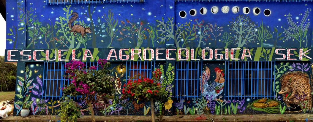 Las Animalditas: constructoras de paz a través del muralismo