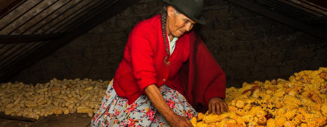 Las manos que cultivan lo que nos comemos están llenas de un conocimiento imprescindible y su labor es vital para la ciudad.