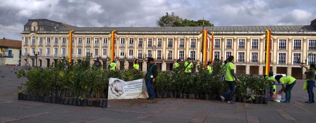 La negativa de la Alcaldía a recibir 2.339 árboles para la Van der Hammen