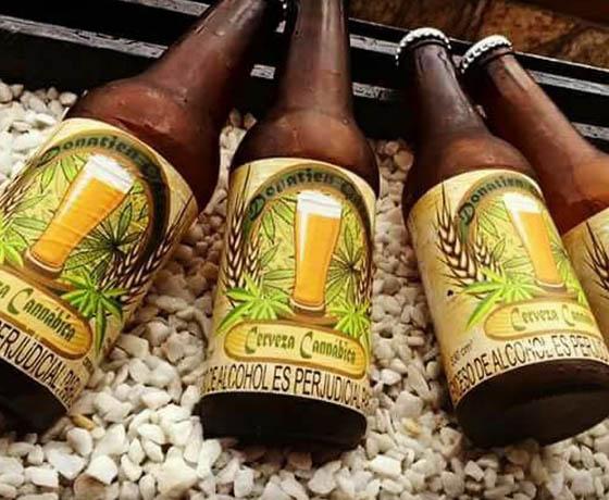 Cerveza Canábica Cartel Urbano