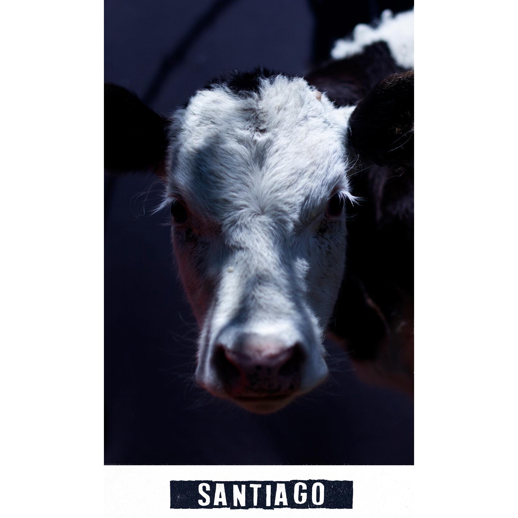 santiago_0.jpg