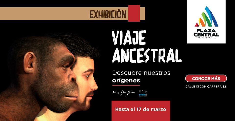 viaje_ancestral.jpg