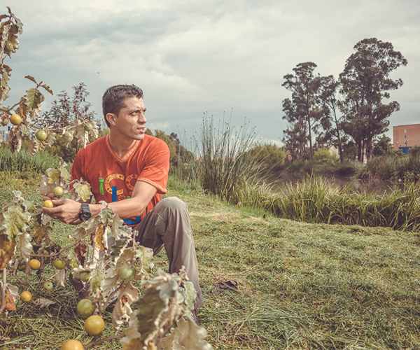 Así trabajan cinco ambientalistas que protegen los humedales bogotanos