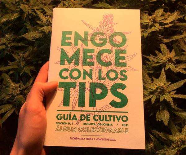 'Engomece con los tips', una guía de autocultivo de cannabis para los consumidores conscientes